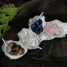 Load image into Gallery viewer, Oceanology Trinket Tableware Oyster Assorted Dish