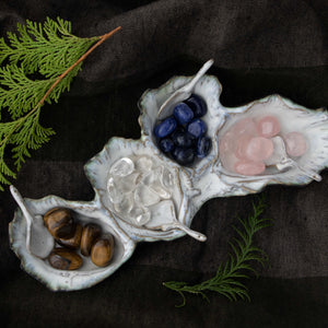 Oceanology Trinket Tableware Oyster Assorted Dish