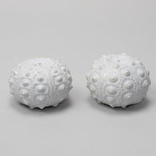 Load image into Gallery viewer, Sea Urchin Salt & Pepper Shaker Set - Heting Artelier