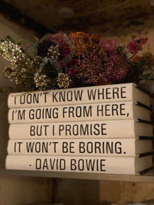 David Bowie Decorative Book Set