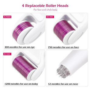 6 in 1 Microneedle Derma Roller Kit - Peril
