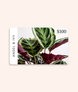 Digital Gift Card
