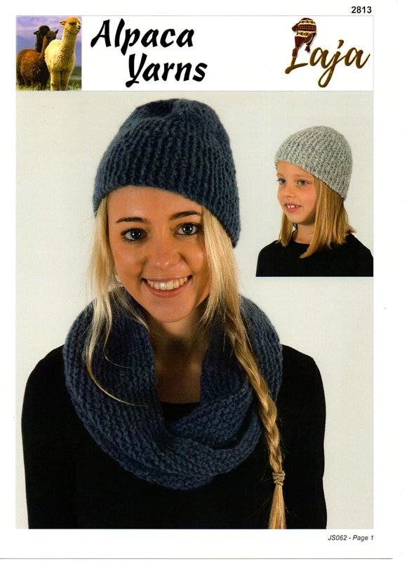 Family Accessories #2813 by Alpaca Yarns