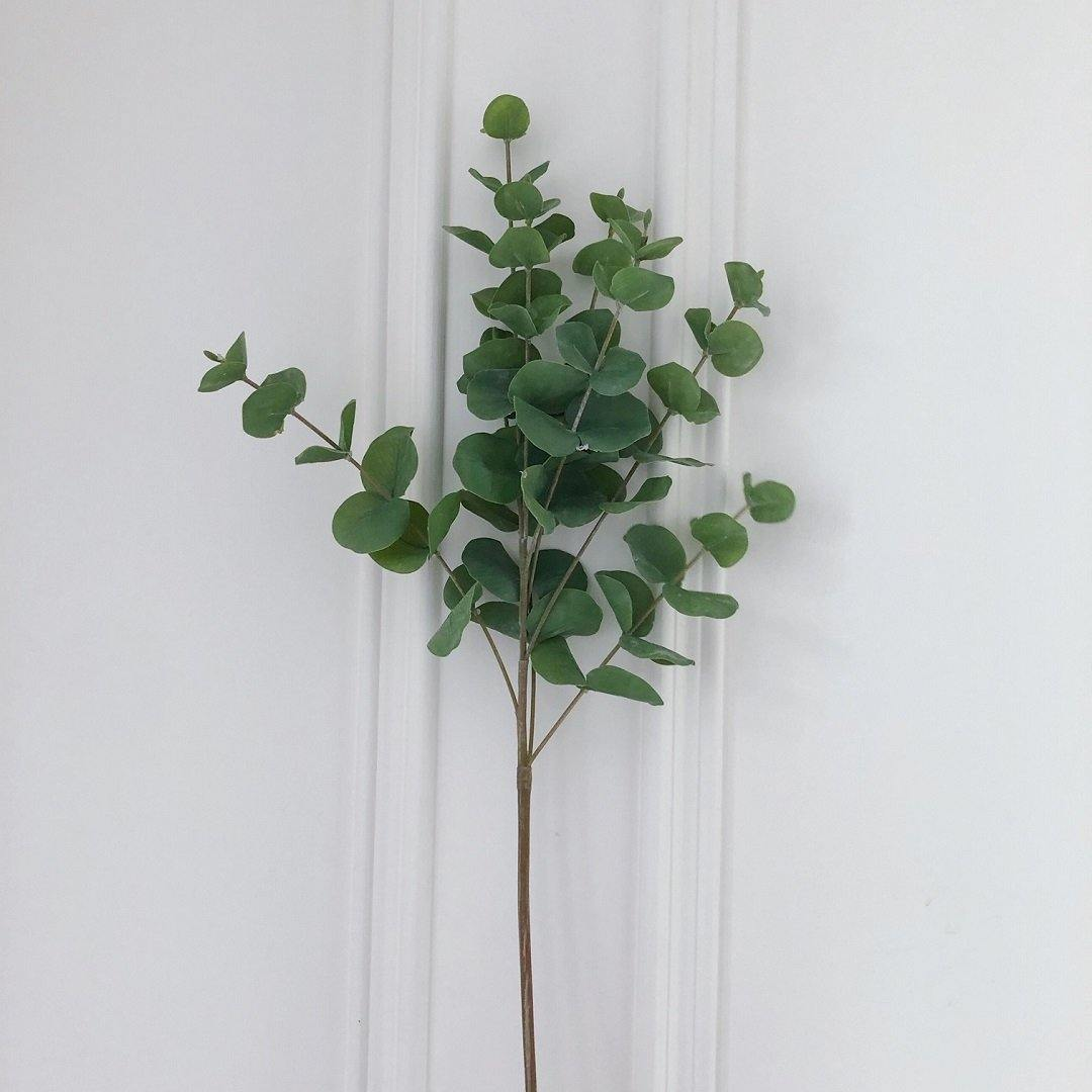 Green Eucalyptus Stem - The Irish Country Home
