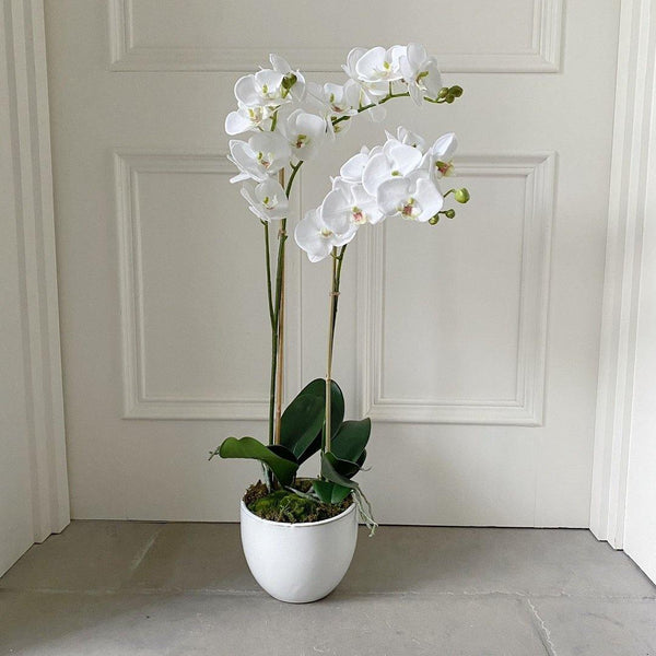 Artificial Potted Orchid 73cm