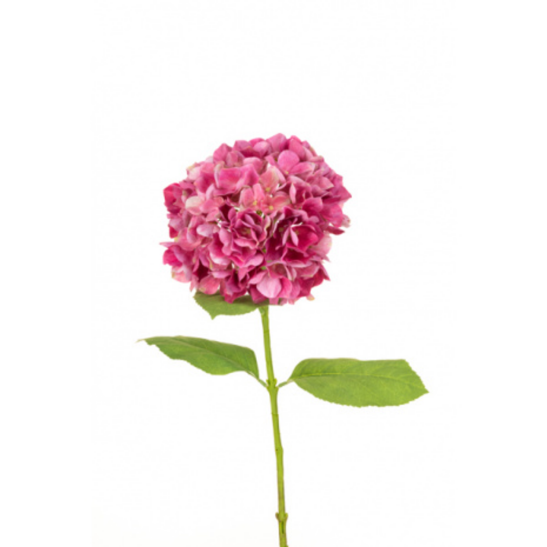 The Irish Country Home Gift Card