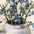 Beautiful Blueberries - The Irish Country Home