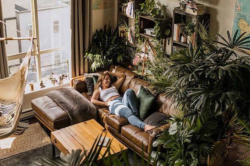 9 Reasons to Bring Nature in with Indoor Plants