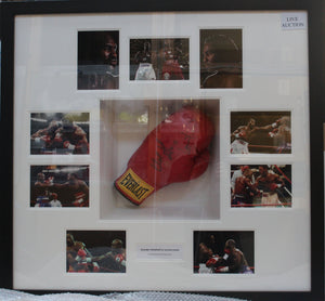 Holyfield & Lewis Glove Display