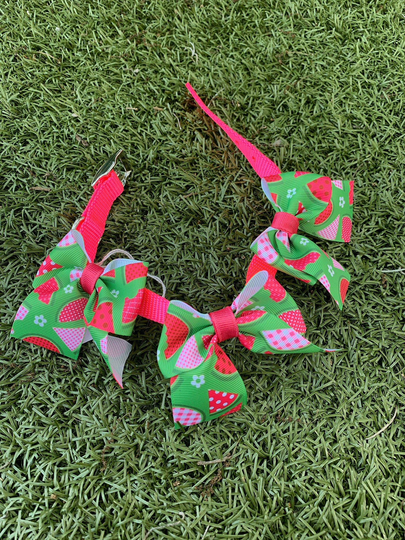 Neon Watermelon Bow Collar