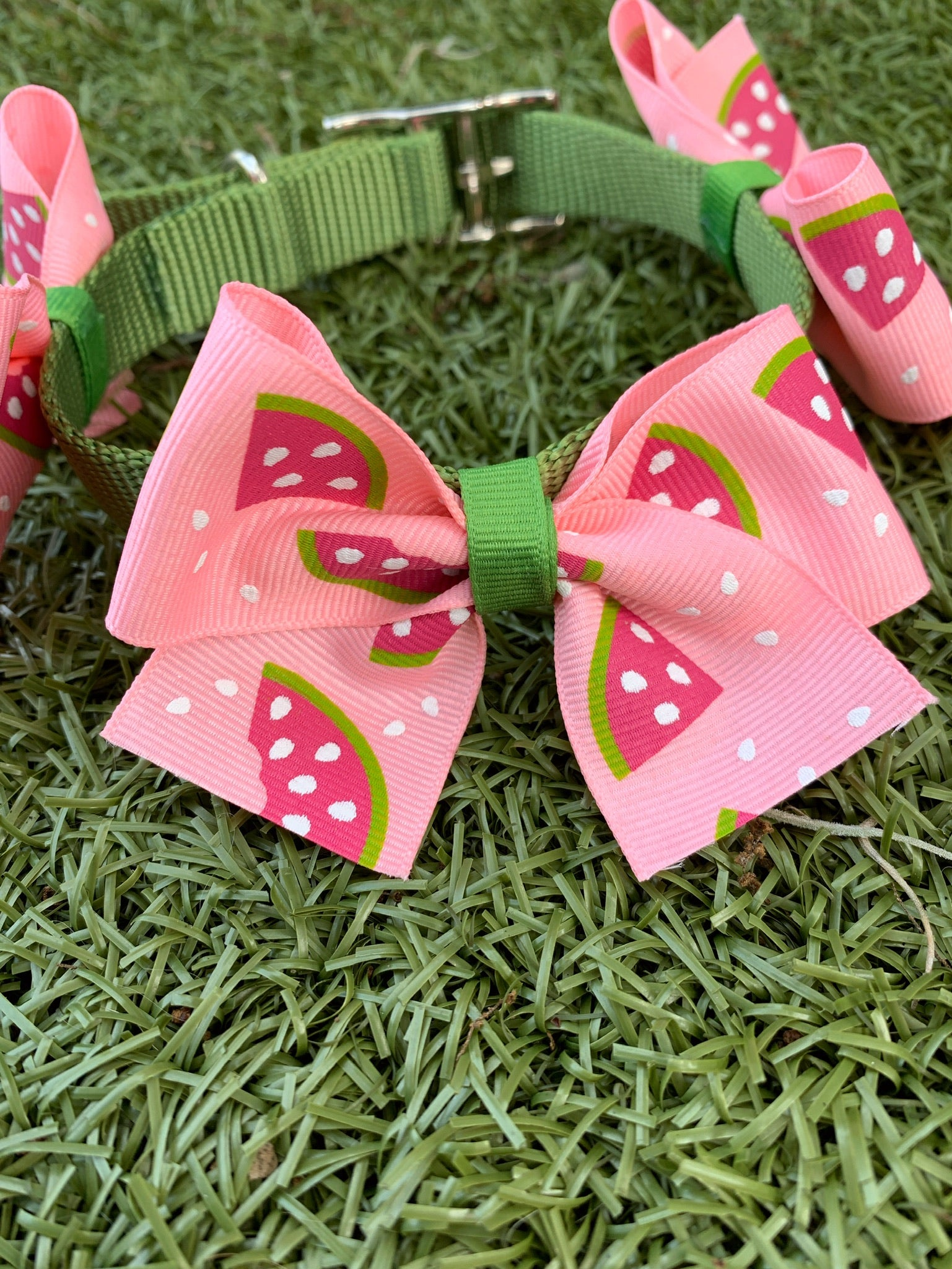 Watermelon Bow Collar