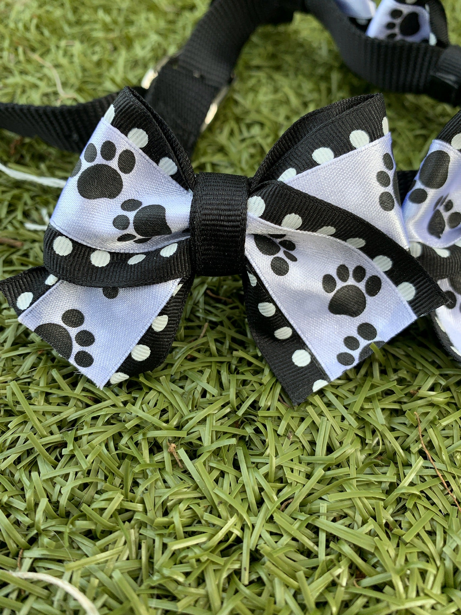 Black & White Paws Bow Collar