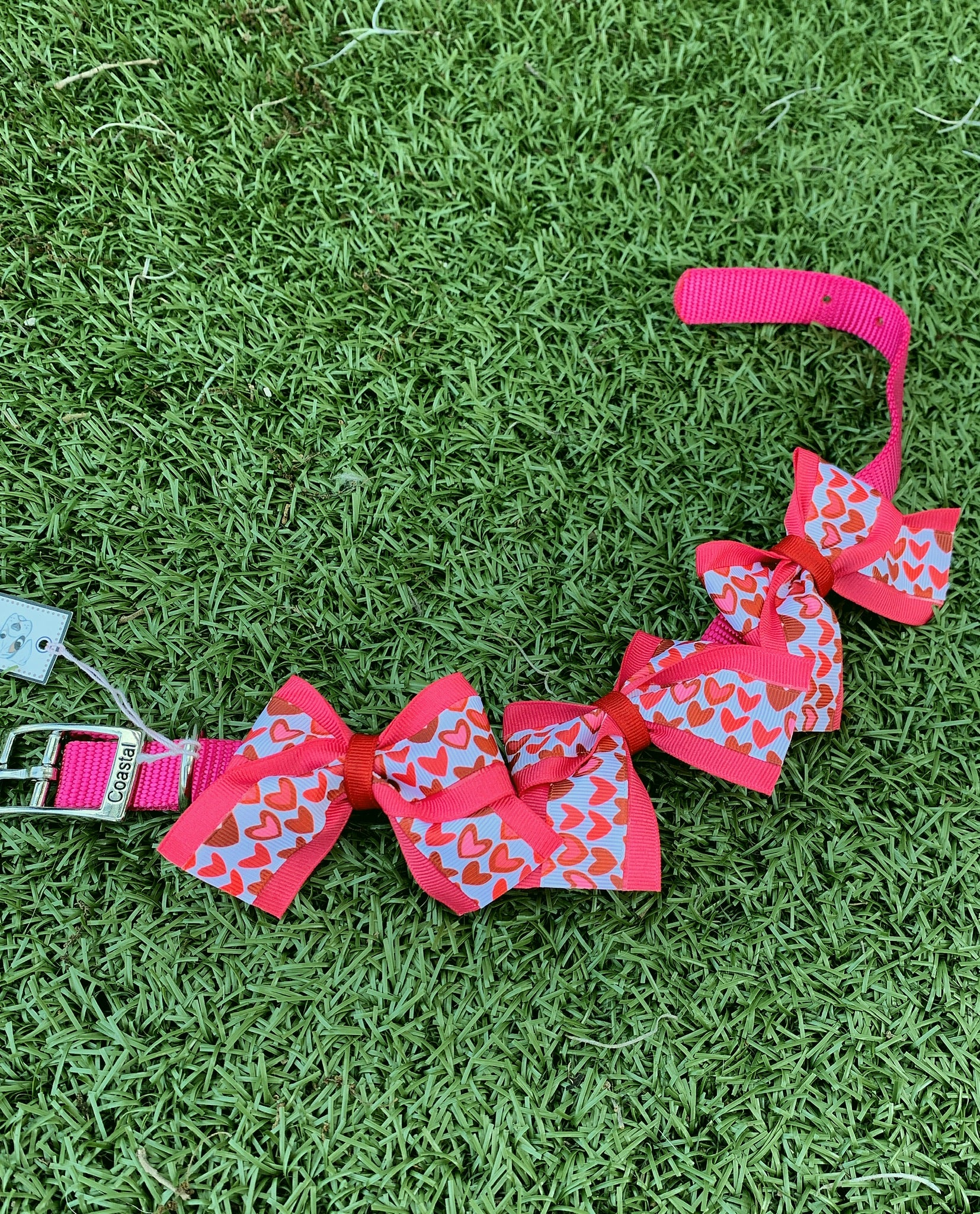 Valentine's Day Bow Collar