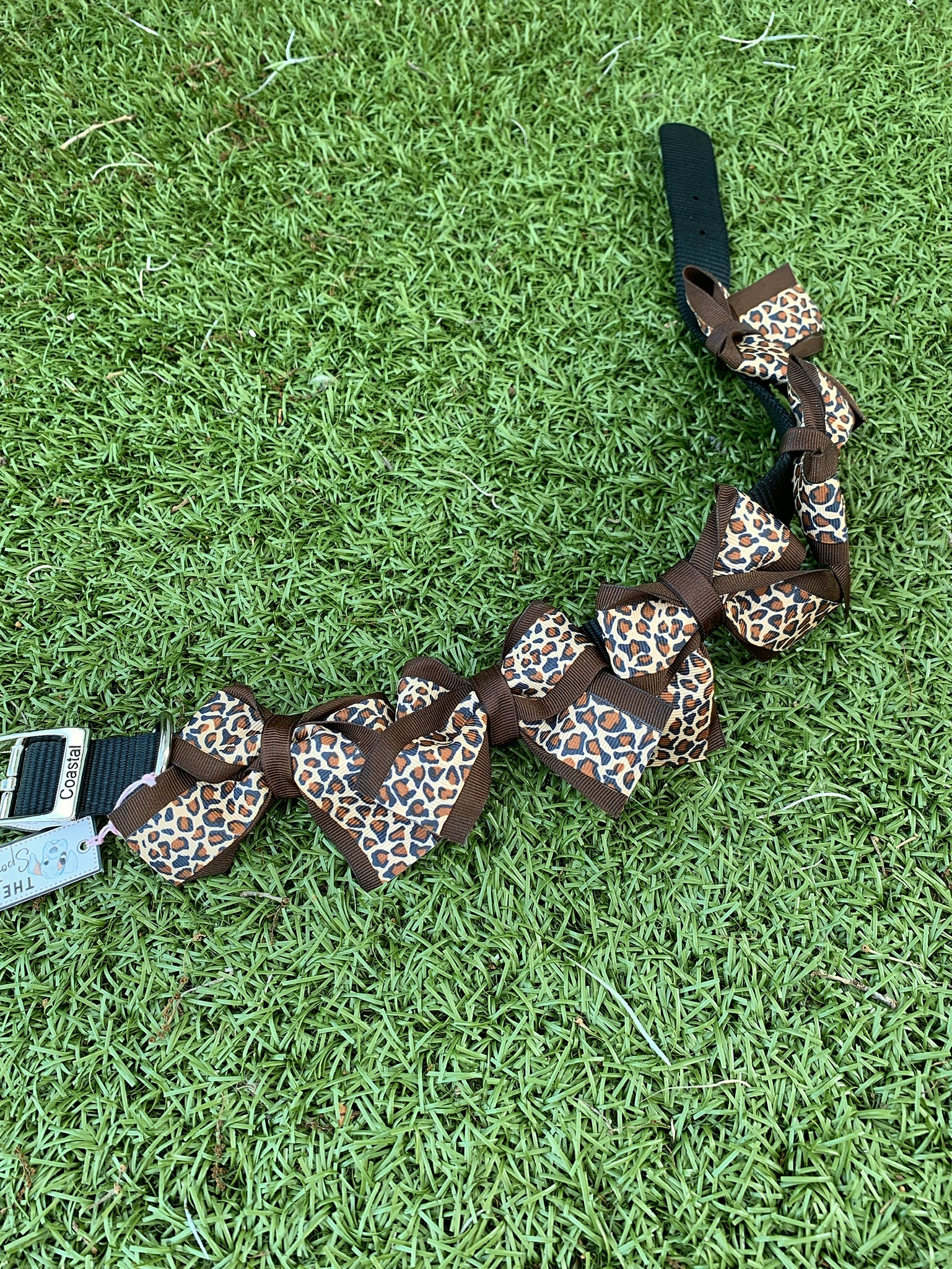 Leopard Bow Collar