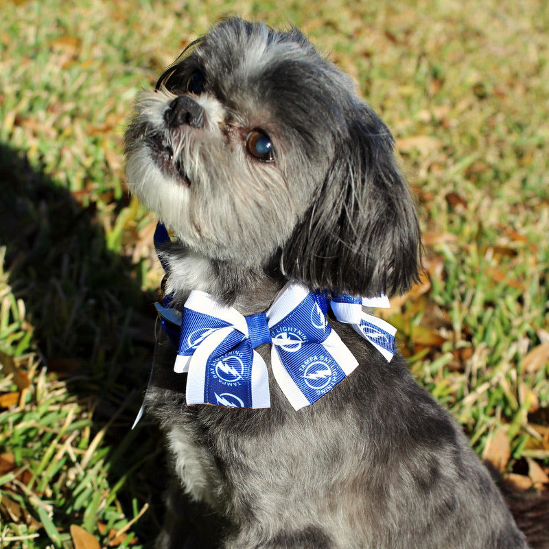 Tampa Bay Lightning Bow Collar