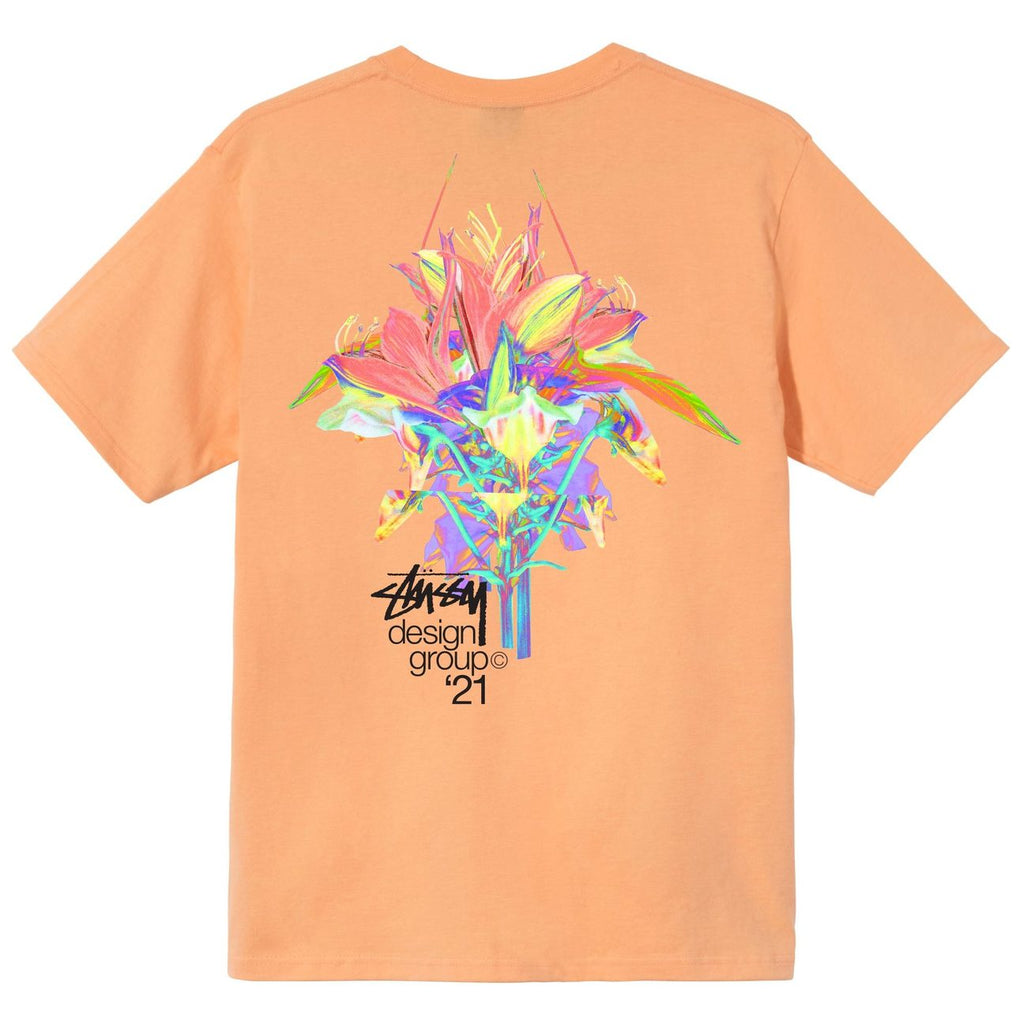 Design Group 21 Tee 1904653 Peach