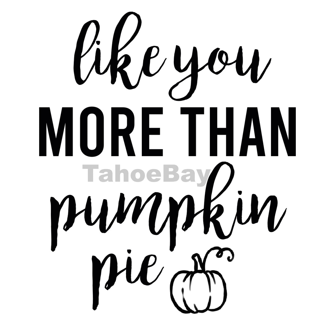 Like You More Than Pumpkin Pie Can Cooler Graphic Design Files | SVG PNG