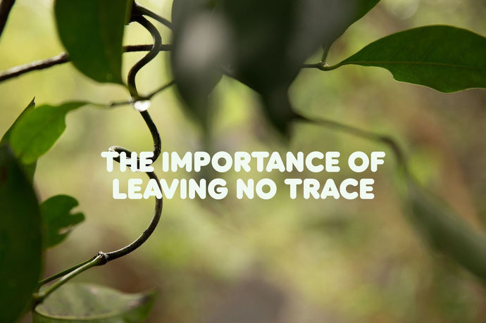The Importance of Leaving No Trace