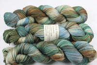 Sam Reward 80/20 merino/silk fingering weight sock yarn