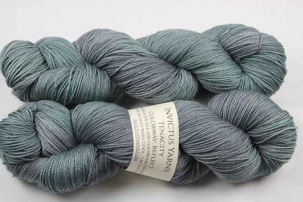 Reflect Tenacity 80/20 merino/silk fingering weight yarn shawl length skein extra length