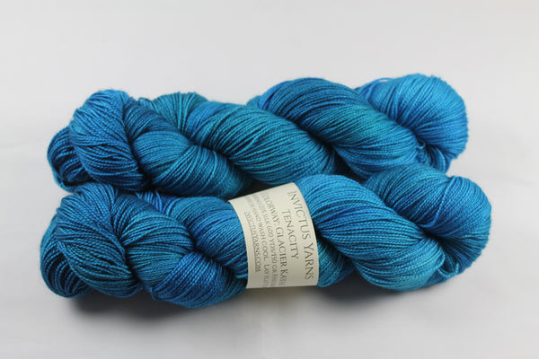 Glacier Kayak Tenacity 80/20 merino/silk fingering weight yarn shawl length skein extra length