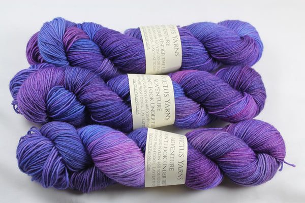 Don't Look Under the Lilacs Adventure merino/nylon sock yarn