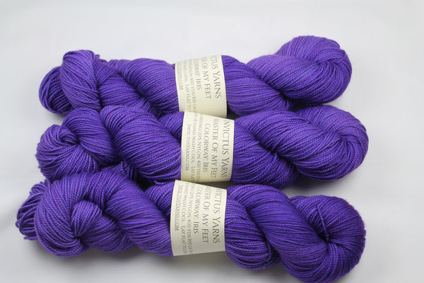 Iris Master of My Feet  merino/nylon fingering weight sock yarn