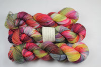 Thirteen Adventure merino/nylon sock yarn