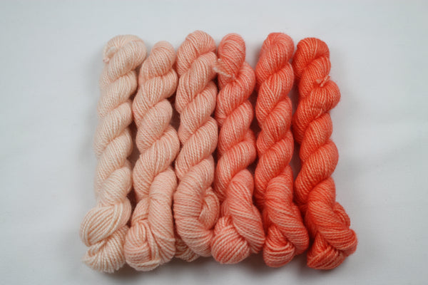 Corals Micro Mini Set Beyond MCN fingering weight yarn