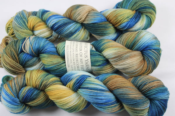 Redecorated Master of My Feet merino/nylon fingering weight sock yarn