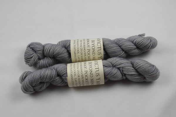 Pocket Change Mini Skein Beyond MCN fingering weight sock yarn