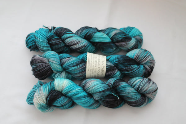 The Vicar is in the Well Unconquerable Sole BFL SW BFL/nylon fingering weight sock yarn