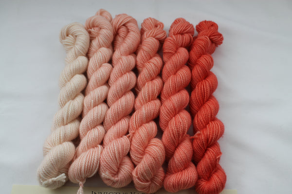 Corals Beyond MCN Mini Kit fingering weight yarn