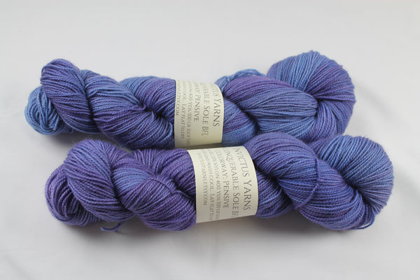 Pensive Unconquerable Sole BFL SW BFL/nylon fingering weight sock yarn