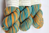 Fall Stripe Adventure Self-Striping Sock Yarn