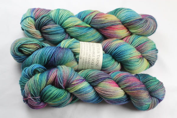 Brother Cadfael's Garden Unconquerable Sole BFL SW BFL/nylon fingering weight sock yarn