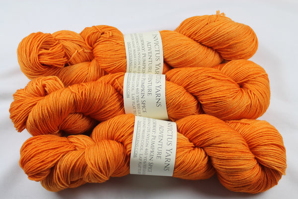 Pumpkin Spice Adventure merino/nylon sock yarn