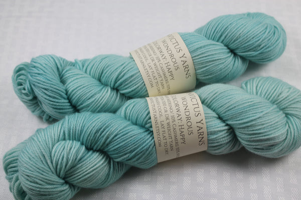 Happy Wondrous DK MCN hand dyed yarn