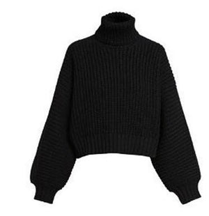 turtle neck Knited  sweater