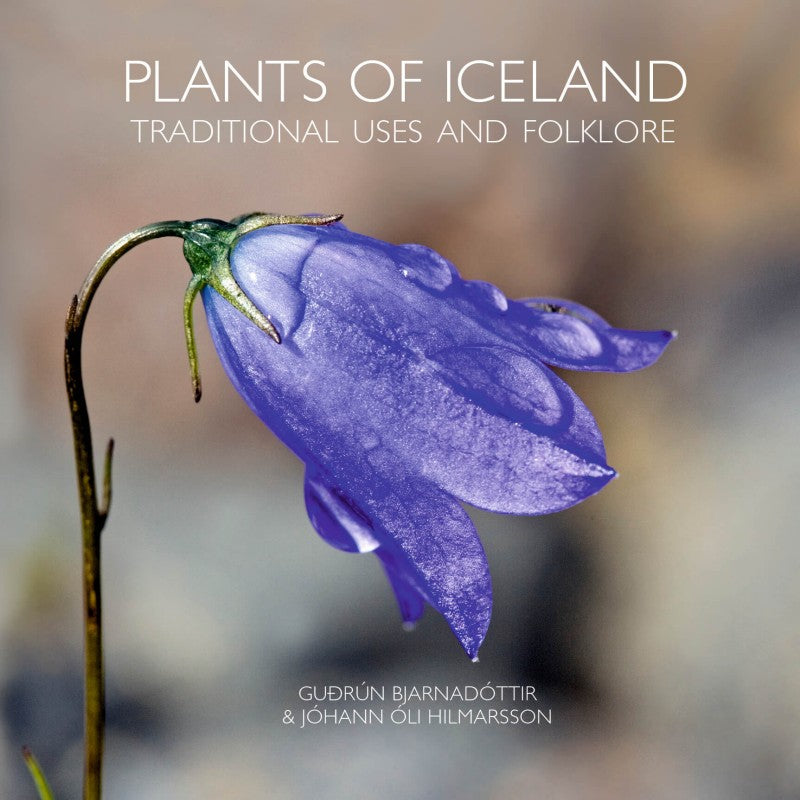 Plants of Iceland - traditional uses and folklore