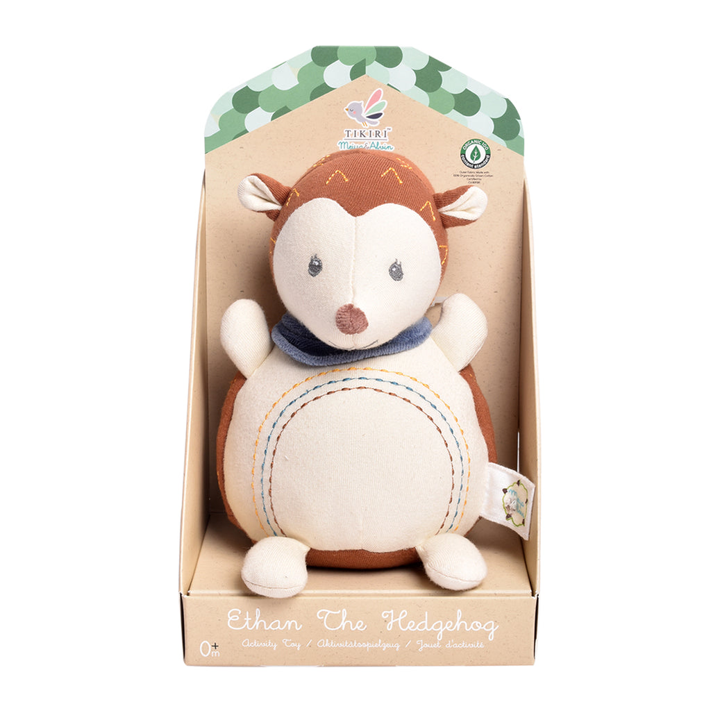 Ethan the Hedgehog Activity Toy
