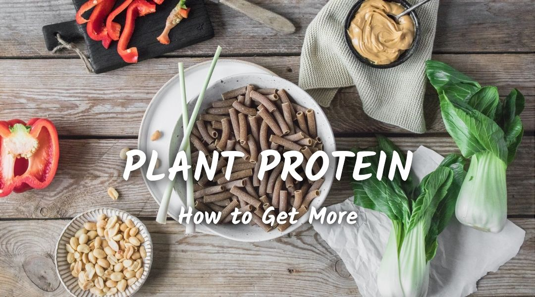 Plant protein to reduce cravings