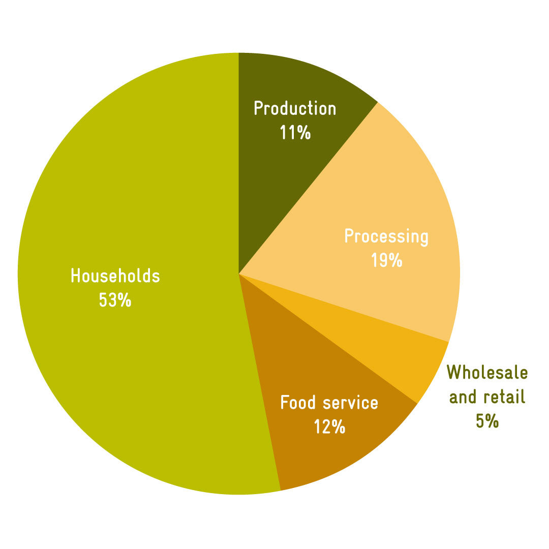 Graph showing food is wasted in households and processing