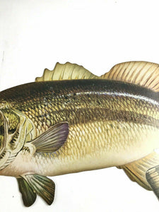 Old Vintage WINCHESTER Fishing - Figural Fish ADVERTISING SIGN- 4478