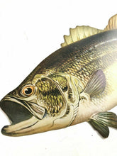 Load image into Gallery viewer, Old Vintage WINCHESTER Fishing - Figural Fish ADVERTISING SIGN- 4478