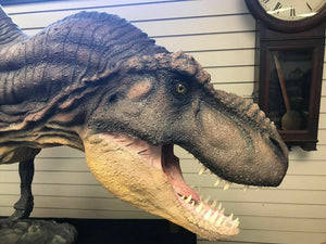 Jurassic Park T-Rex Floor Model Movie Prop - lot 2832