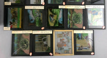 Load image into Gallery viewer, 35 ANTIQUE MAGIC LANTERN GLASS SLIDES IN WOODEN BOX  - lot 3495