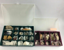 Load image into Gallery viewer, 2pc Assorted Seashell Collection Boxes - Lot 4164