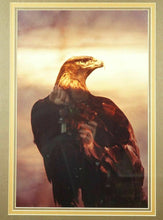 "Load image into Gallery viewer, John Eveland ""Golden Eagle"" Photograph - lot 2510"