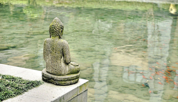 Bouddha de la Contemplation